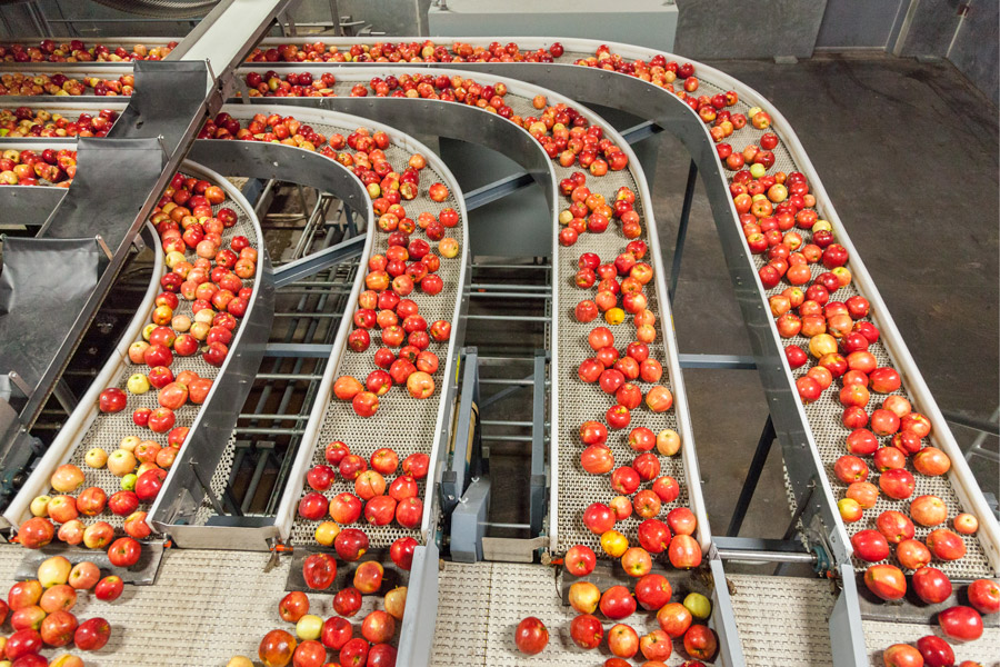 agriculture-automation-fruit-packaging-warehouse-comark